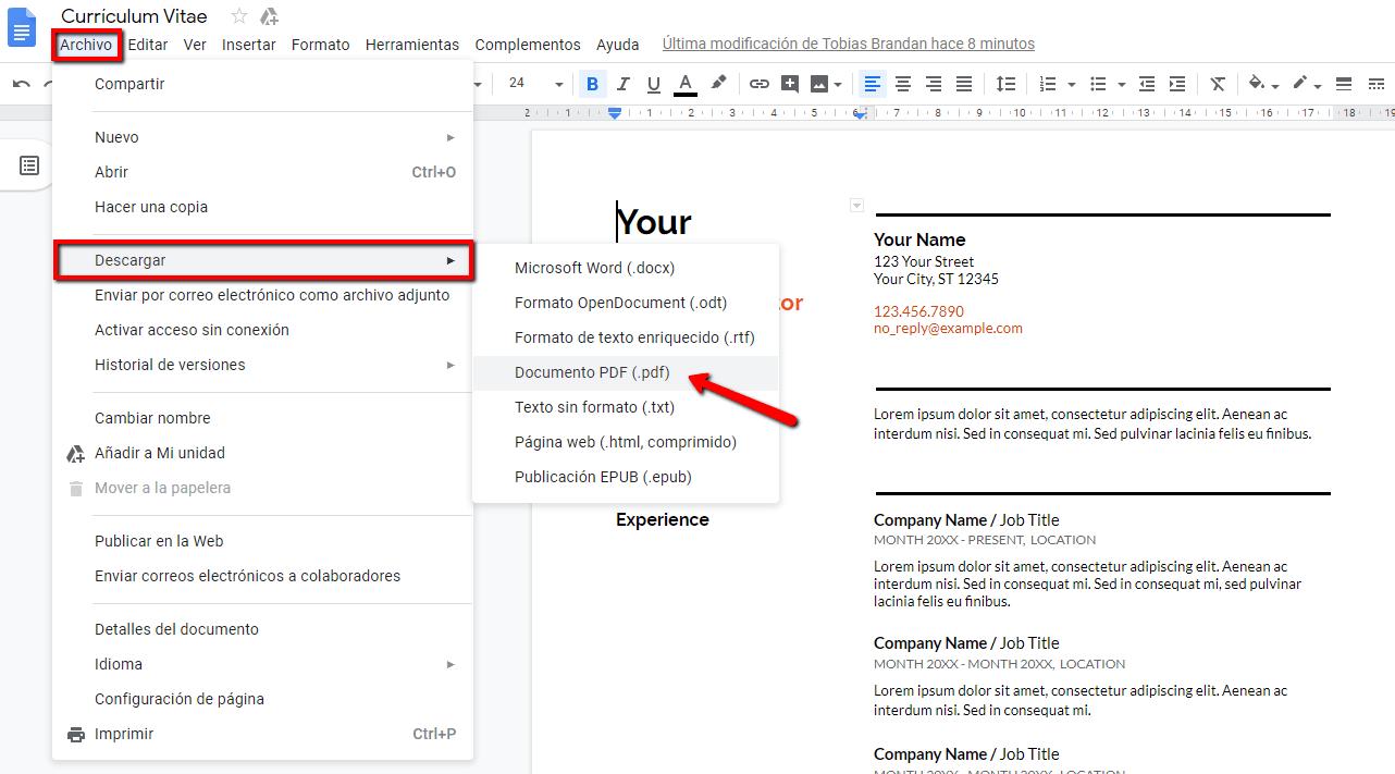 curriculum_vitae_pdf