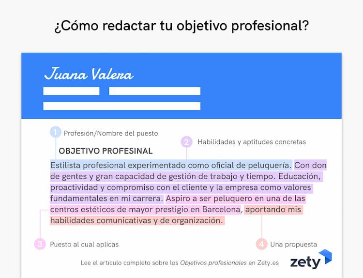 objetivo profesional cv